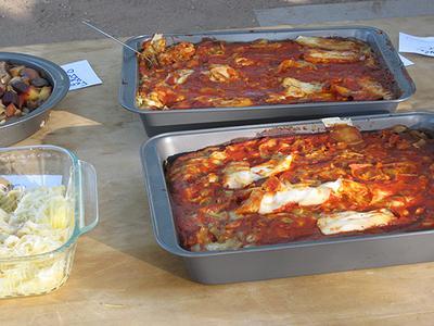 Solar Lasagna