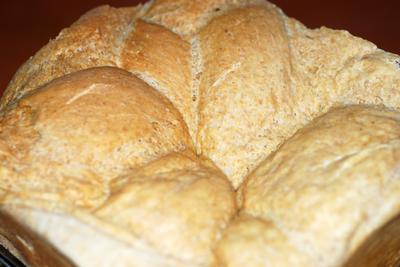 Solar Challah Bread