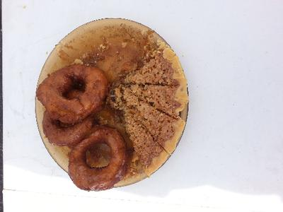 Solar Oven Oatmeal pie with pumpkin doughnuts (what's left)