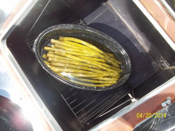 asparagus in Sun Oven