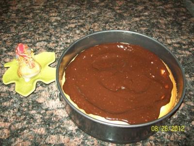Finished Solar Chocolate Cheesecake