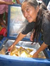 Solar Cooking Initiative