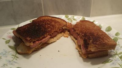 SolSource Grilled cheese and meat sandwich