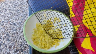 Grating the Squash with a wire grate