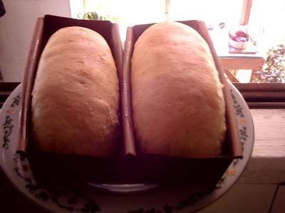 Gourmet Solar Oven Baked Bread