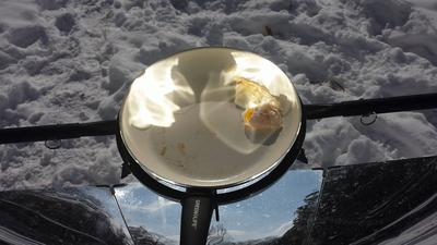 Cooking Chicken on the SolSource in 5 degree temps