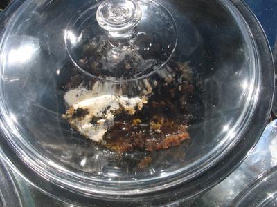 Sunny Fudge Sandwich Mixture in Hot Pot