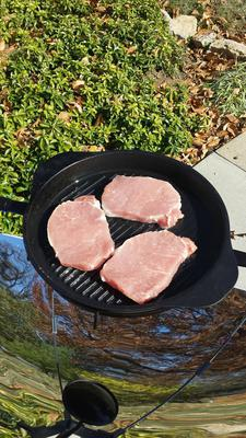 Three thick pork chops on the SolSource